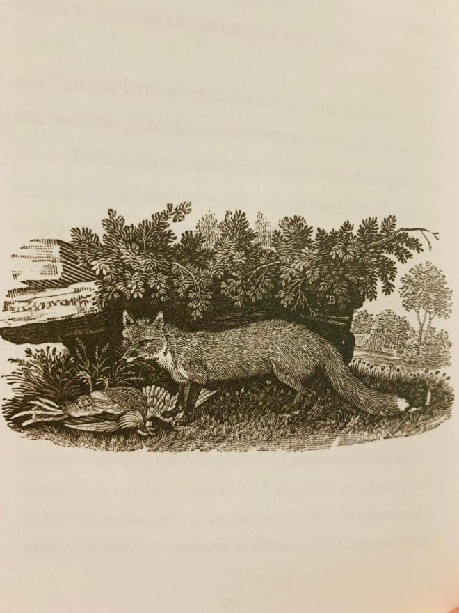 Fox at the Manger engraving 2