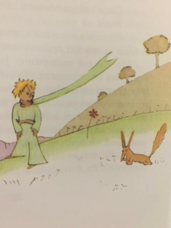 Fox in the little prince